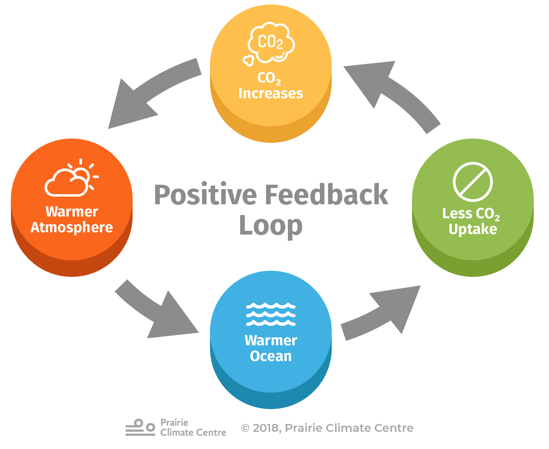 Positive Feedback Loop (Oceans)