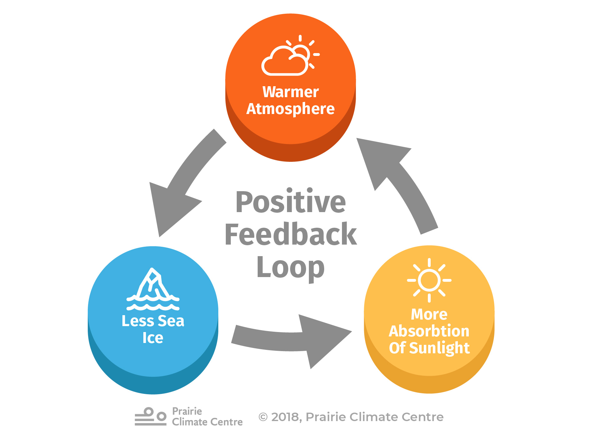 Positive Feedback Loop (Ice)